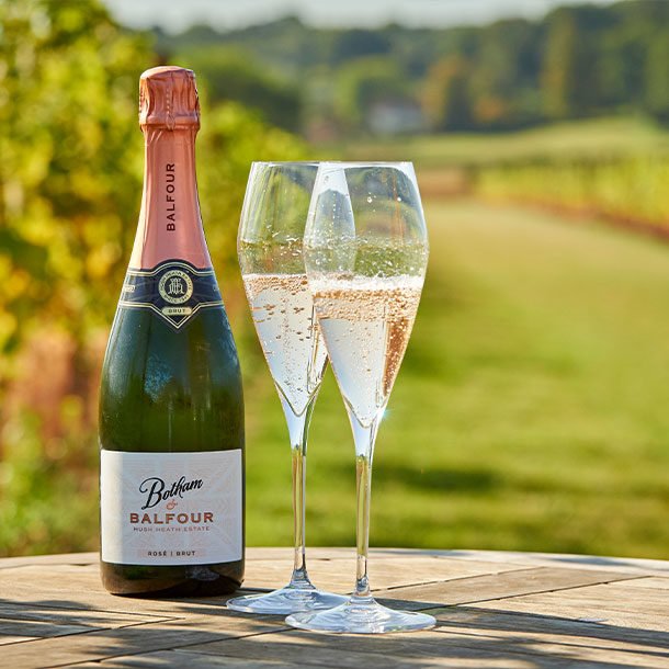 Botham-sparkling-glasses-vineyard